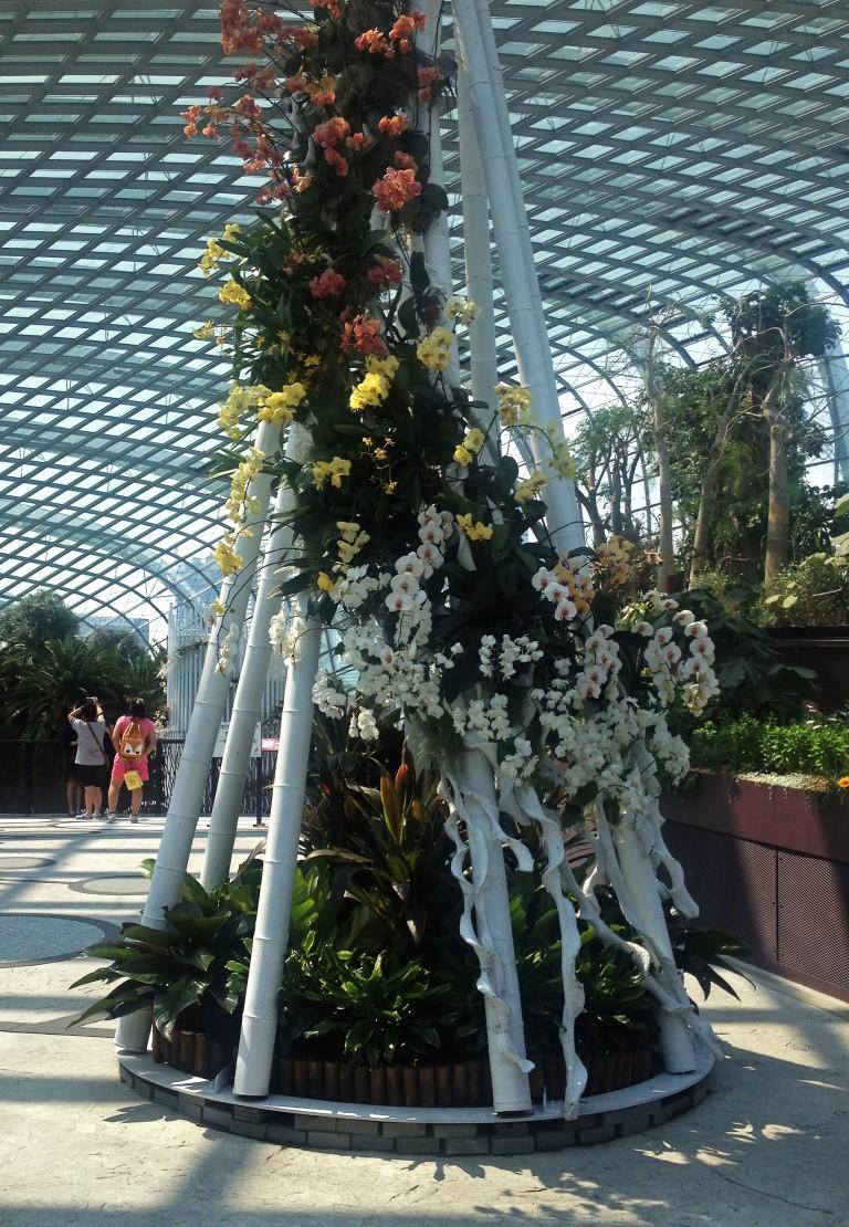 singapore-flowers1